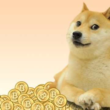 Best Dogecoin (DOGE) Wallets
