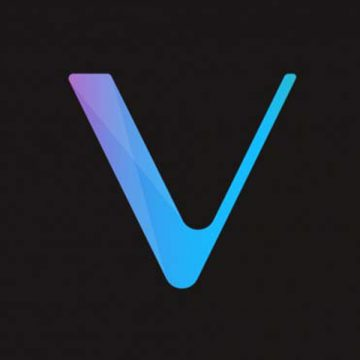 Best Vechain (VET) Wallets