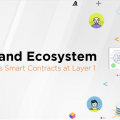 Algorand implements Smart Contracts at Layer 1
